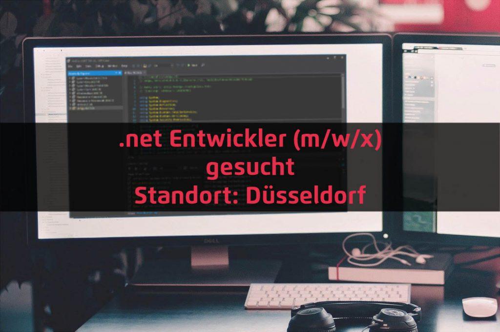 .net Entwickler